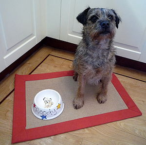 Slanted Dog Bowl With A Portrait Of Your Dog - food, feeding & treats