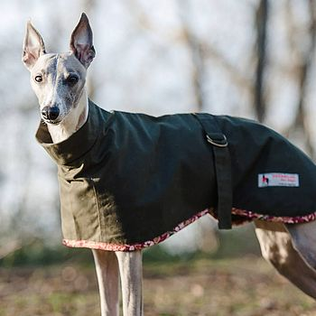 Bottle Green Whippet Roll Neck Dog Coat
