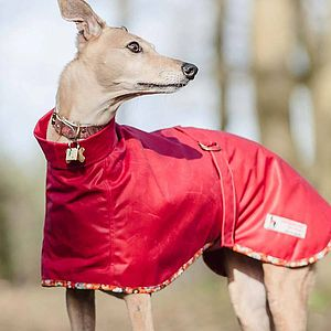 Whippet Dog Coat Roll Neck - clothes