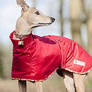 Whippet Dog Coat Roll Neck