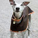 Dark Brown Whippet Coat Standard Collar