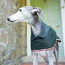 Bottle Green Whippet Coat Standard Collar