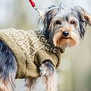 Heather/Oatmeal Diamond Gloucester Dog Jumper