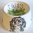 Spaniel Bowl With A Portrait Of Your Dog