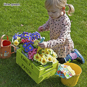 Personalised Child's Crate Planting Kit - gardening