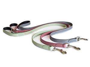Pastel Leather Dog Leads