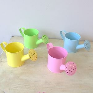 Mini Pastel Watering Can - garden sale