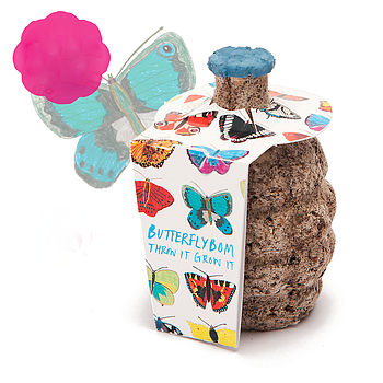 Butterfly Seed Bomb