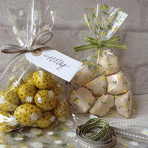 Spring Tulip Cellophane Gift Bag Set