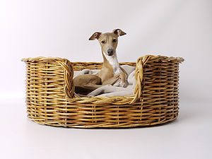 Natural Oval Rattan Pet Basket For Cats Or Dogs - cats