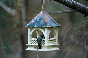 Bempton Wooden Bird Table Feeder
