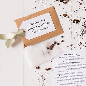 Personalised Father's Day Seed Packet Gift - gardening