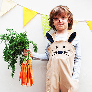 Bunny Rabbit Dungaree Costume