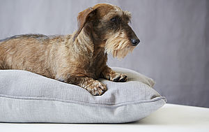 Grey Linen Union Dog Bed - pet beds baskets
