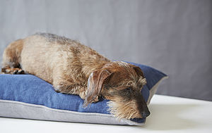 Navy Linen Union Dog Bed
