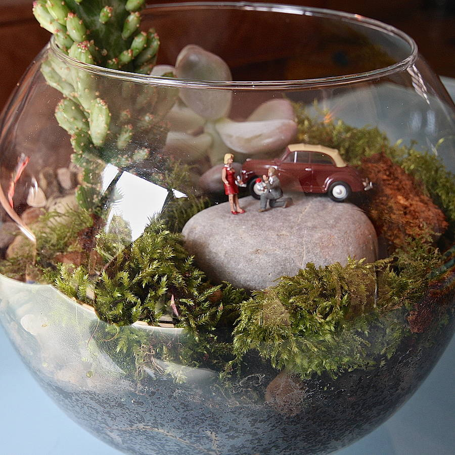 mini world terrarium kit the engagement by london garden trading. Black Bedroom Furniture Sets. Home Design Ideas