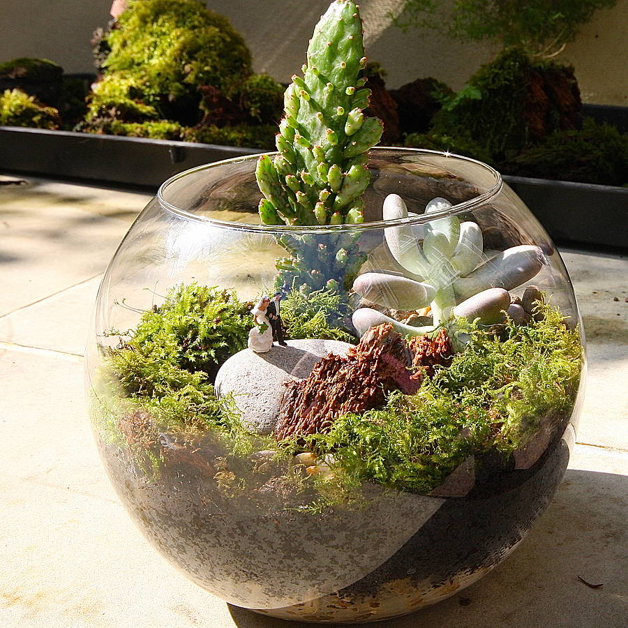 mini world terrarium kit the wedding couple by london garden trading. Black Bedroom Furniture Sets. Home Design Ideas