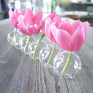 Glass Caterpillar Multi Stem Vase