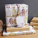 Bird's Egg Gift Wrap