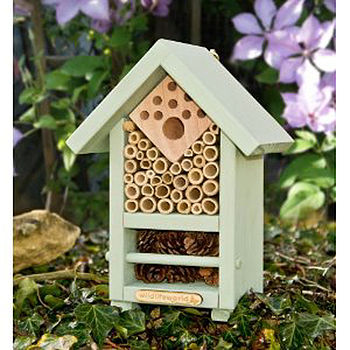 Bee And Bug Habitat With Wildflower Seeds