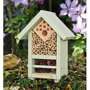 Bee And Bug Habitat With Wildflower Seeds - birds & wildlife