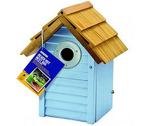 Blue Beach Hut Bird Nest Box - birds & wildlife