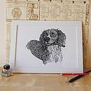 Spaniel With A Stick Print