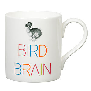 'Bird Brain' Slogan Mug