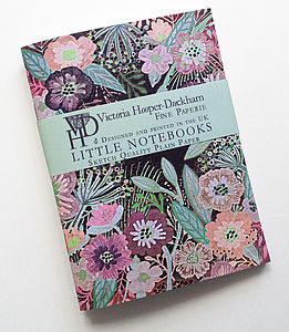 Night Meadow Little Notebooks