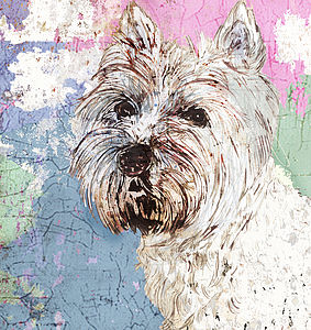 West Highland Terrier Portrait - canvas prints & art