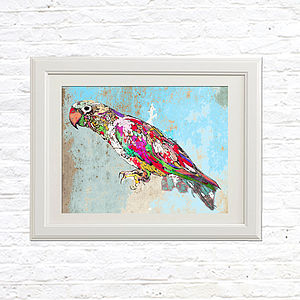 Tropical Parrot Limited Edition Signed Print