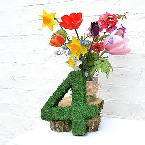 Real Moss Decorative Table Number - children's room accessories