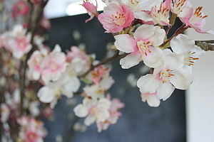 Spring Blossom Spray - fresh & alternative flowers