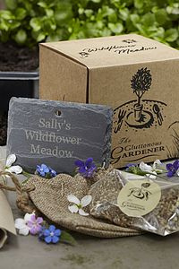 Wildflower Meadow Seeds Gift