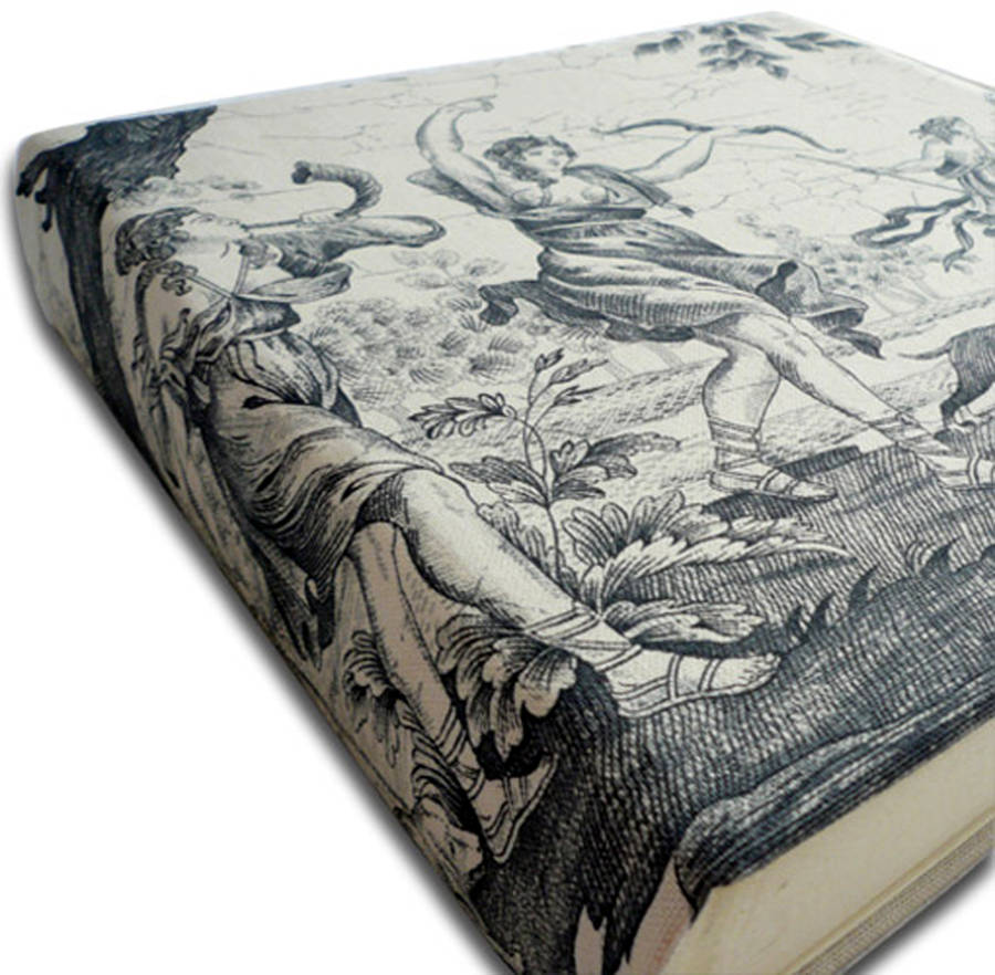 toile de jouy fabric photo album by rose bonbon. Black Bedroom Furniture Sets. Home Design Ideas