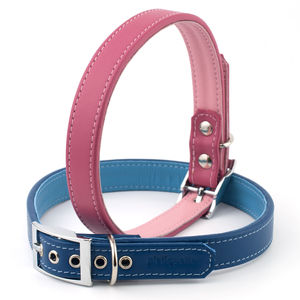 Twin Tone Leather Dog Collar - walking