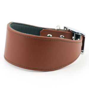 Colour Contrast Lurcher / Whippet Collar - dogs
