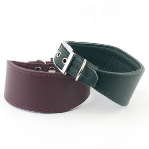 Handmade Leather Whippet / Greyhound Collar - walking