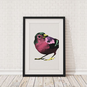 Pop Art Sparrows Portrait Framed Print