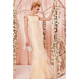 Beige Bridal Dress In Chiffon And Lace - wedding dresses & accessories