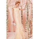 Beige Bridal Dress In Chiffon And Lace