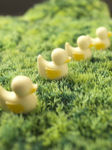 Chocolate Ducks - easter treats