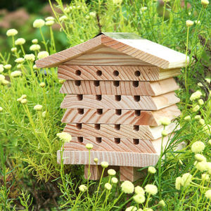 Bee Nesting Home - shop by price