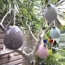 Hanging Egg Vase