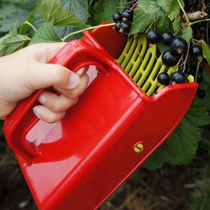 Berry Picker - tools & equipment