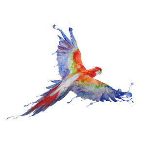 Parrot On Canvas