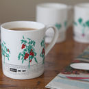 Seasonal Vegetable Gardening Mug Set Of Three