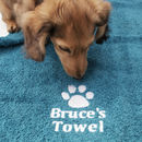Personalised Paw Print Pet Towel