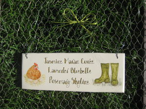 Hen And Wellies Sign - art & decorations