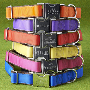 Personalised Dog Collar - walking
